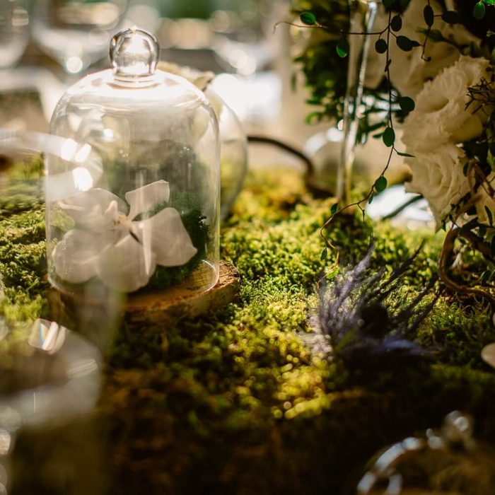 La-seratta-secret-garden-themed-wedding_9