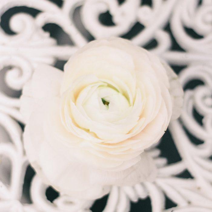 La_seratta_delicate_spring_wedding_12